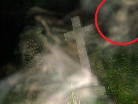 7Фактов про кладбище
