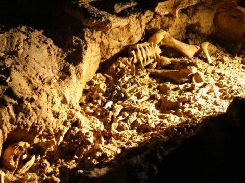 7Фактов о пещере скелетов в Таиланде