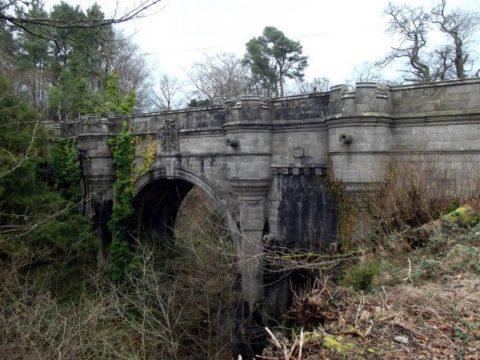 7Фактов про мост, убивающий собак